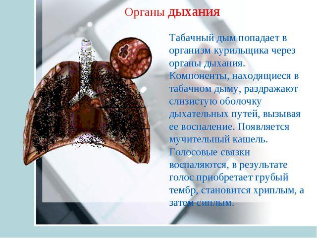 Табачный дым попадает в организм курильщика через органы дыхания. Компоненты,...