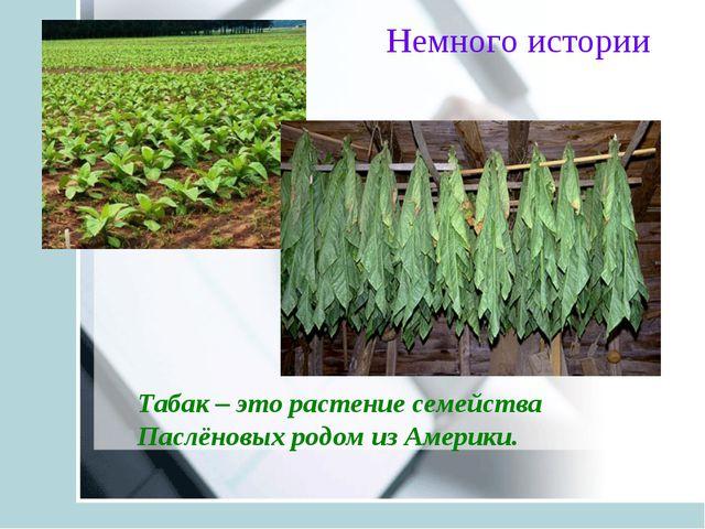 Табак – это растение семейства Паслёновых родом из Америки. Немного истории