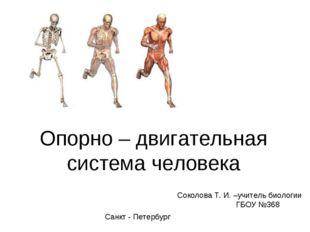 Опорно – двигательная система человека Соколова Т. И. –учитель биологии ГБОУ