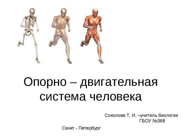 Опорно – двигательная система человека Соколова Т. И. –учитель биологии ГБОУ...
