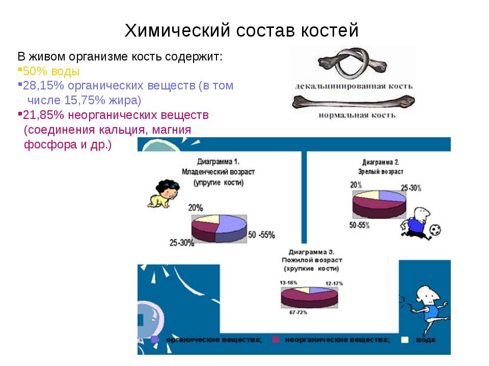 Химический состав костей В живом организме кость содержит: 50% воды 28,15% ор...