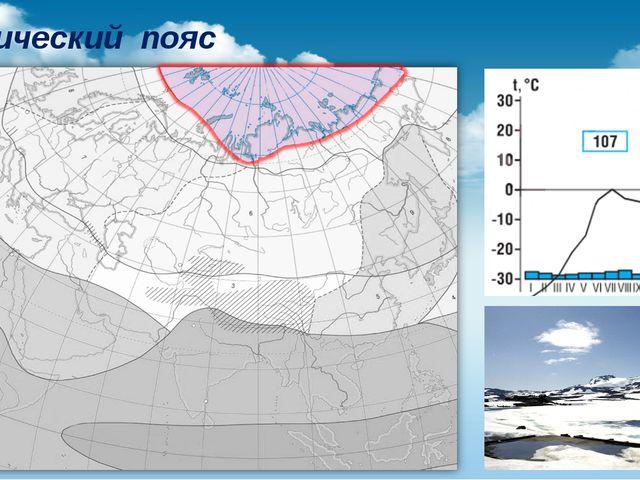 Арктический пояс