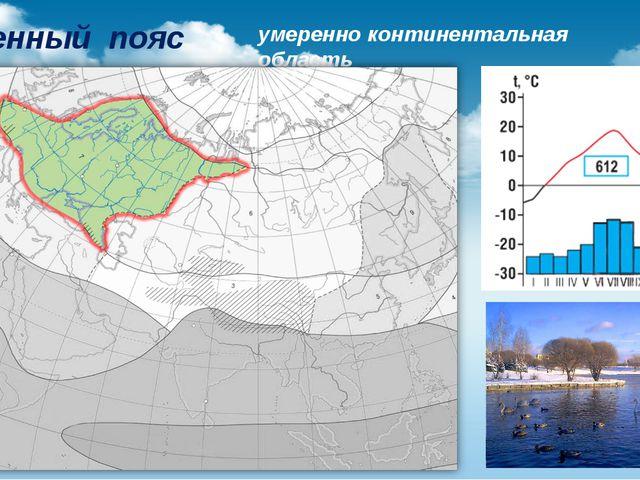 Умеренный пояс умеренно континентальная область
