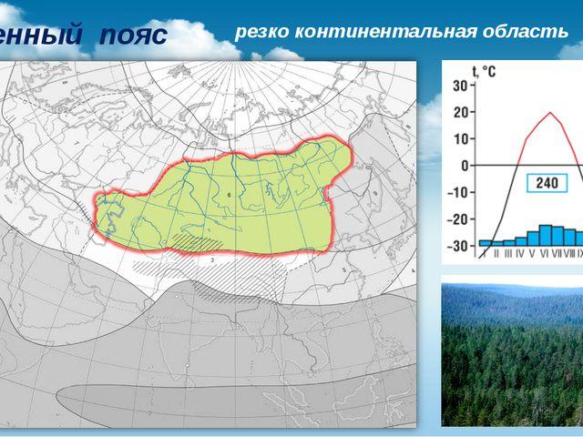 Умеренный пояс резко континентальная область