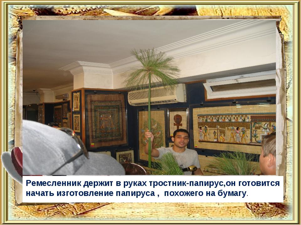 Ремесленник держит в руках тростник-папирус,он готовится начать изготовление...