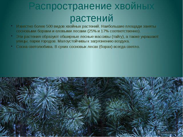 Распространение хвойных растений Известно более 500 видов хвойных растений. Н...