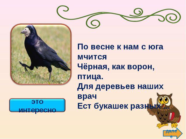 далее По весне к нам с юга мчится Чёрная, как ворон, птица. Для деревьев наши...