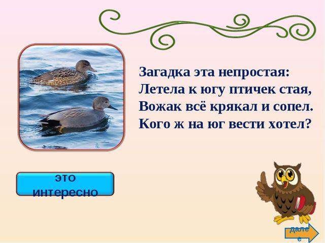 далее Загадка эта непростая: Летела к югу птичек стая, Вожак всё крякал и соп...