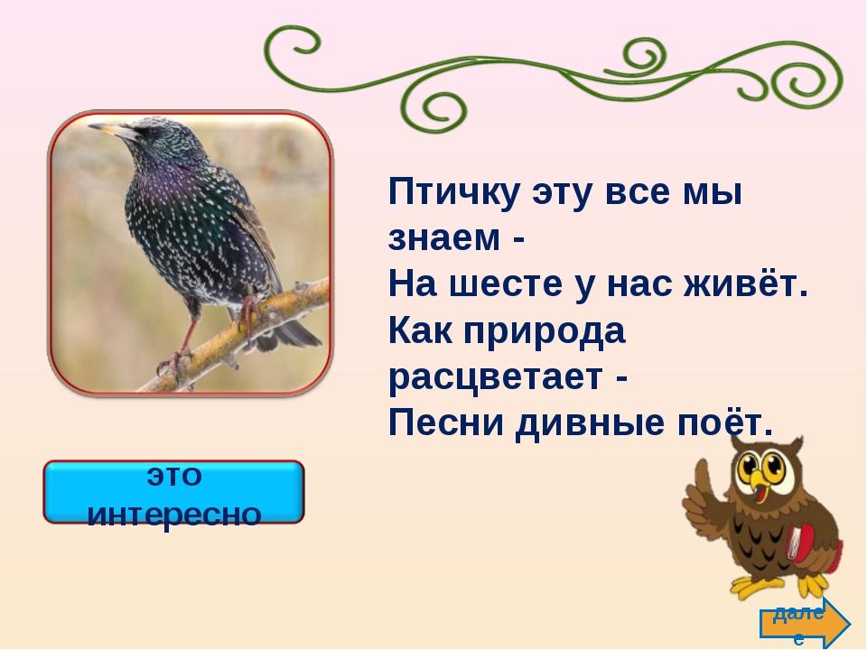 далее Птичку эту все мы знаем - На шесте у нас живёт. Как природа расцветает...
