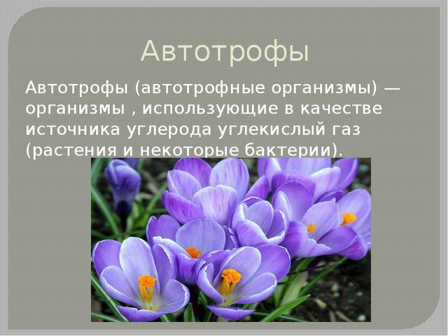 Автотрофы Автотрофы (автотрофные организмы) — организмы , использующие в каче...