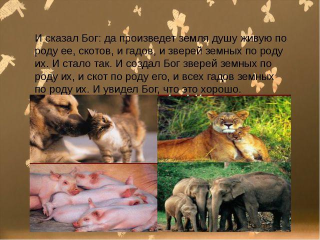 И сказал Бог: да произведет земля душу живую по роду ее, скотов, и гадов, и...
