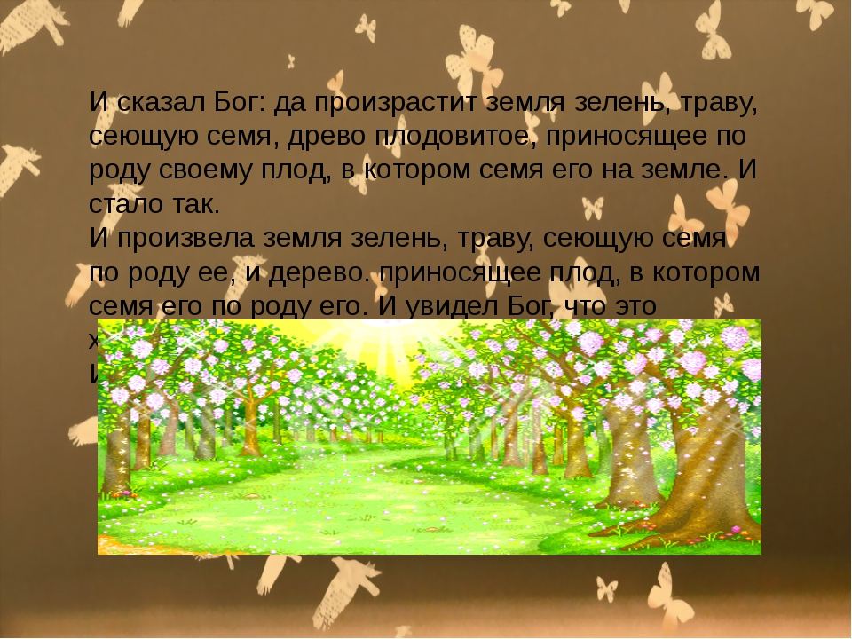 И сказал Бог: да произрастит земля зелень, траву, сеющую семя, древо плодови...