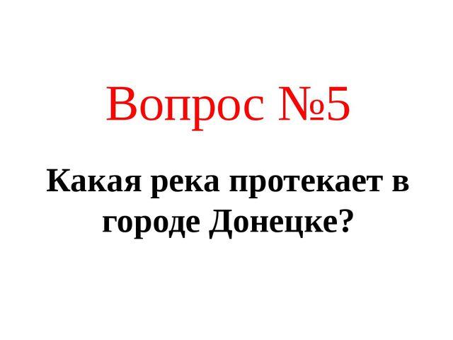 Какая река протекает в городе Донецке? Вопрос №5