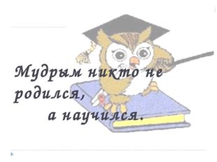 Мудрым никто не родился, а научился.