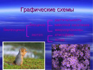 растительность биоценоз животное население биогеоценоз микроорганизмы экотоп
