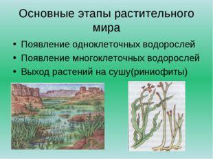 Основные этапы растительного мира Появление одноклеточных водорослей Появлени