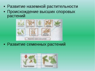 Развитие наземной растительности Происхождение высших споровых растений Разви