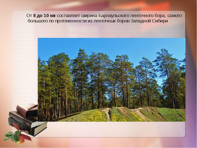 От 8 до 10 км составляет ширина Барнаульского ленточного бора, самого большо...