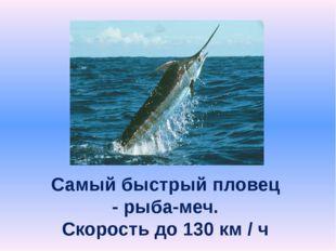 Самый быстрый пловец - рыба-меч. Скорость до 130 км / ч