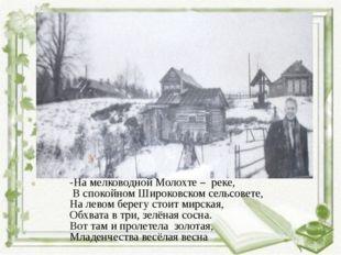 -На мелководной Молохте – реке, В спокойном Широковском сельсовете, На левом