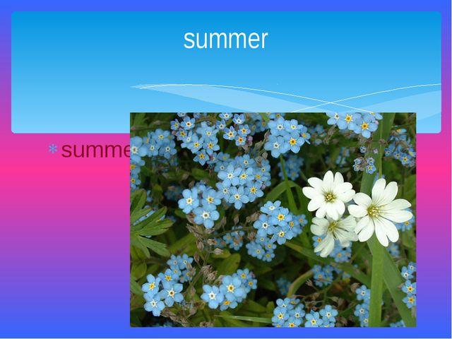 summer summer