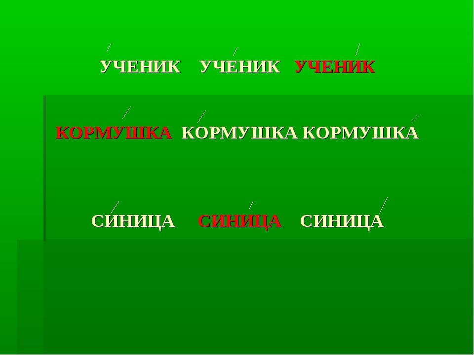 УЧЕНИК УЧЕНИК УЧЕНИК КОРМУШКА КОРМУШКА КОРМУШКА СИНИЦА СИНИЦА СИНИЦА