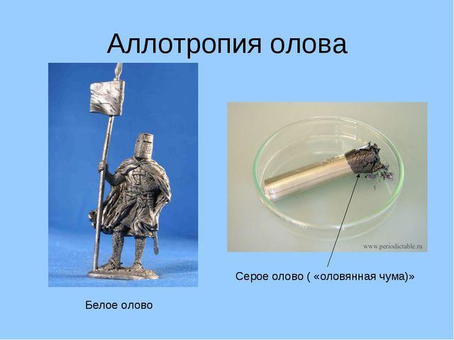 Аллотропия олова Белое олово Серое олово ( «оловянная чума)»