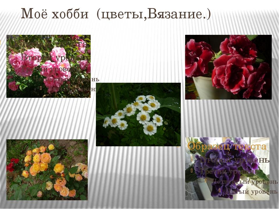 Моё хобби (цветы,Вязание.)