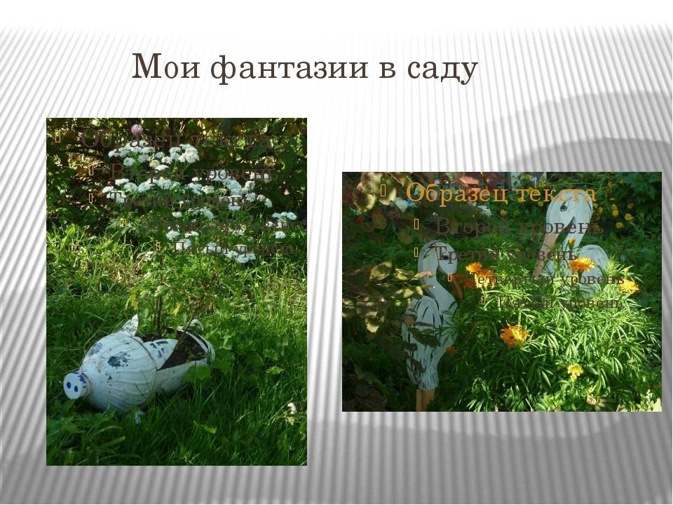 Мои фантазии в саду