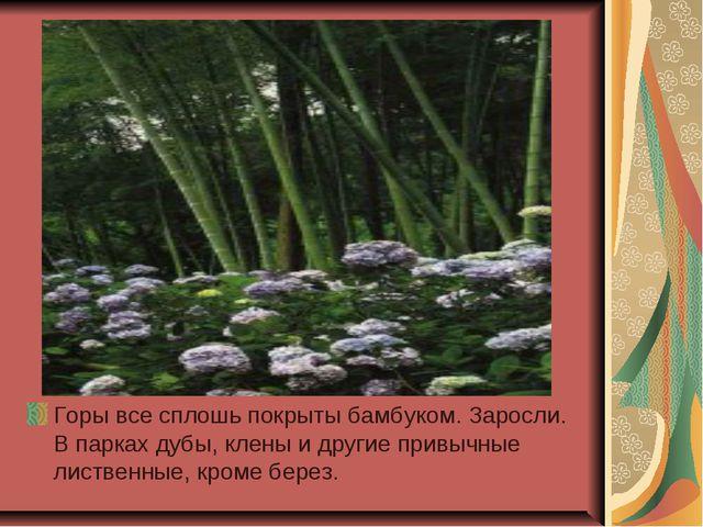 Горы все сплошь покрыты бамбуком. Заросли. В парках дубы, клены и другие прив...