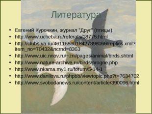"Литература Евгений Курочкин, журнал ""Друг"" (птицы) http://www.ucheba.ru/refer"