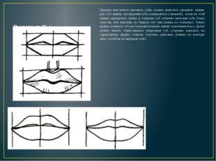 Рисуем губы Прежде чем начать рисовать губы, нужно наметить среднюю линию рт