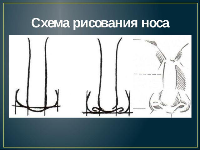 Схема рисования носа
