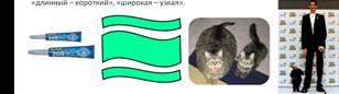 http://festival.1september.ru/articles/637610/img18.jpg