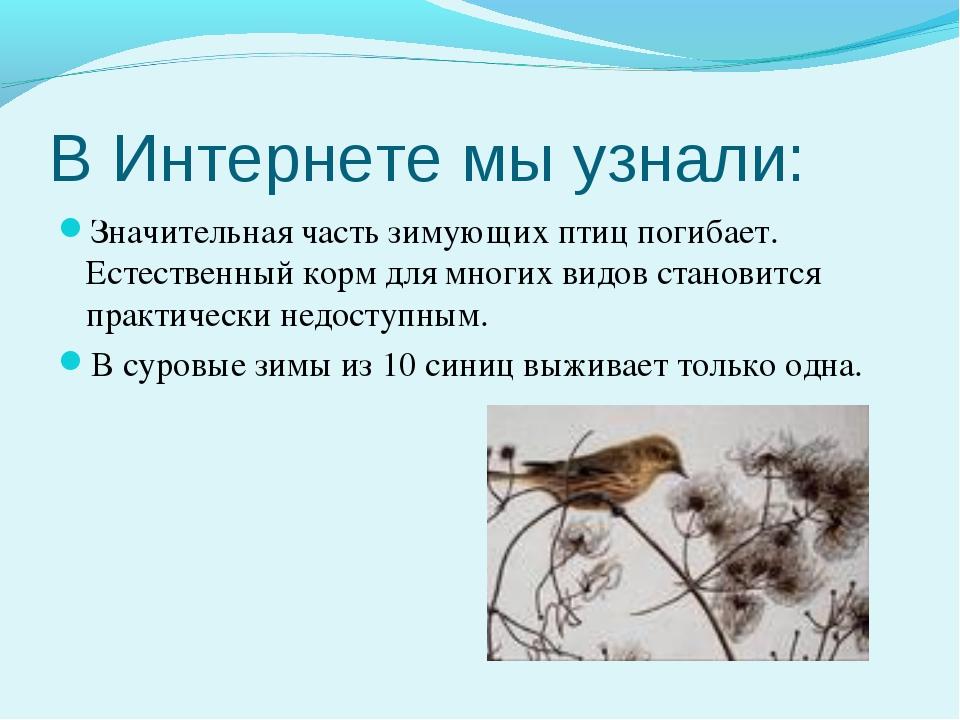 В Интернете мы узнали: Значительная часть зимующих птиц погибает. Естественны...