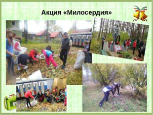 Акция «Милосердия» FokinaLida.75@mail.ru