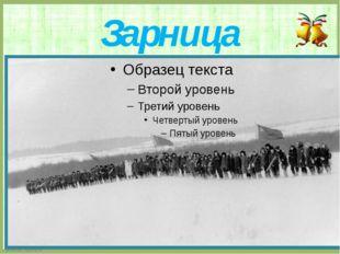 Зарница FokinaLida.75@mail.ru