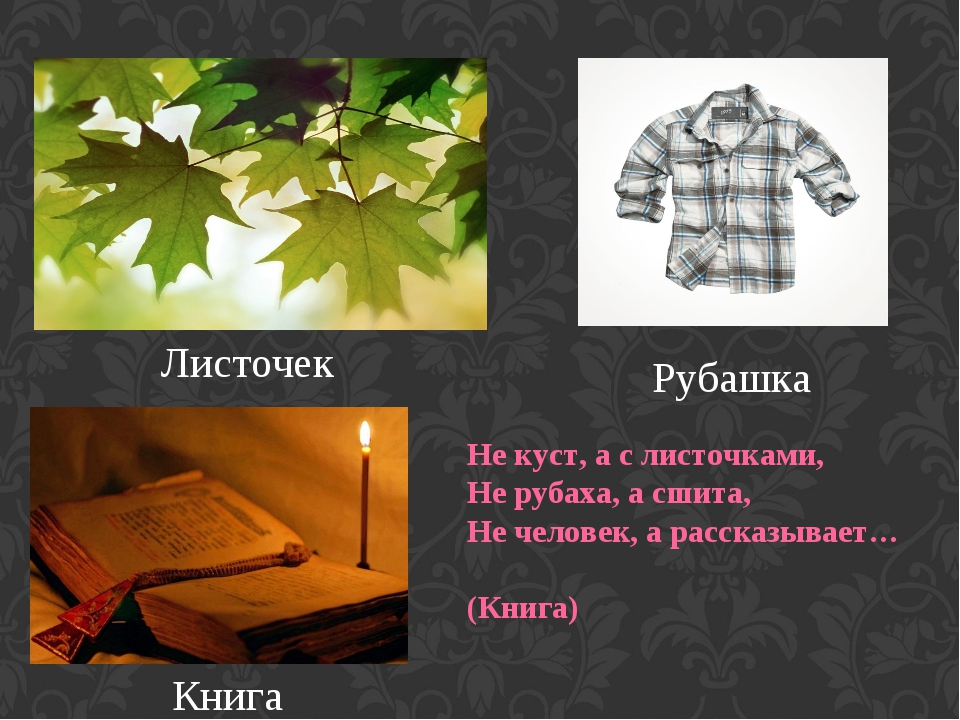Листочек Рубашка Книга Не куст, а с листочками, Не рубаха, а сшита, Не челов...