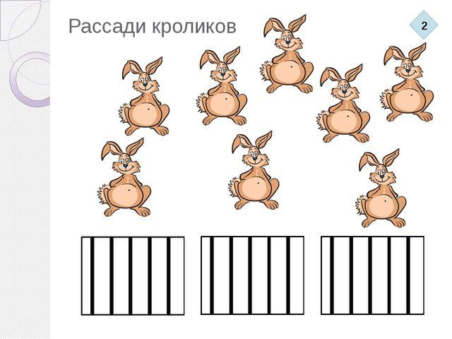 Рассади кроликов 2