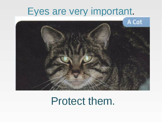 Eyes are very important. Protect them.