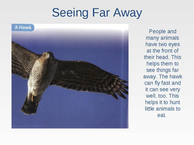 Seeing Far Away People and many animals have two eyes at the front of their h...