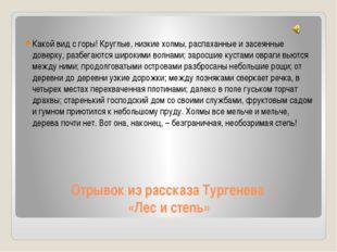Отрывок из рассказа Тургенева «Лес и степь» Какой вид с горы! Круглые, низкие