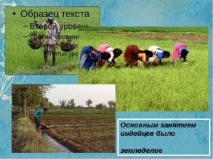 Основным занятием индейцев было земледелие