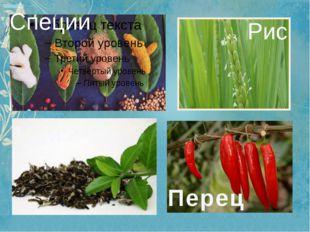 Специи Перец Чай Рис