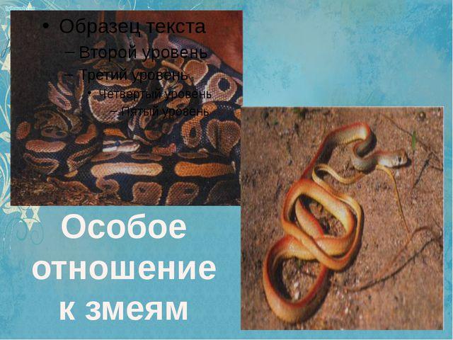 Особое отношение к змеям