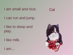 I am small and nice. I can run and jump. I like to sleep and play. I like mil