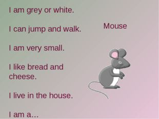 I am grey or white. I can jump and walk. I am very small. I like bread and ch