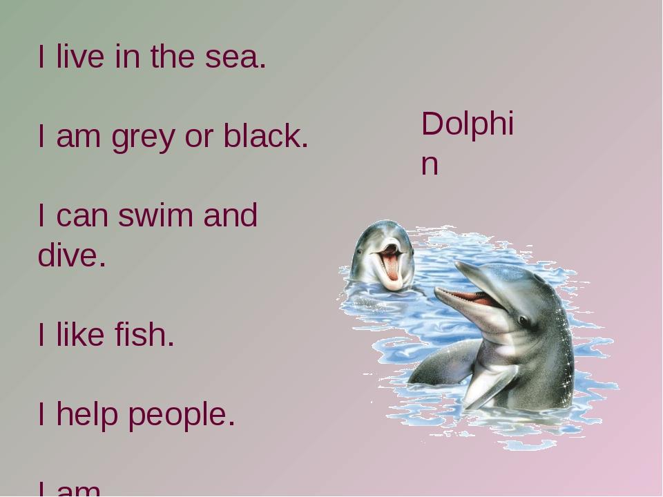 I live in the sea. I am grey or black. I can swim and dive. I like fish. I he...