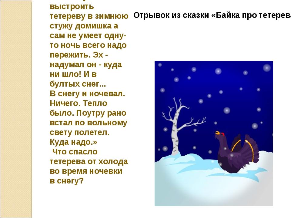 «Некому выстроить тетереву в зимнюю стужу домишка а сам не умеет одну-то ночь...