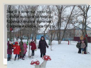 Зимой, в ненастье, непогоду Гурьбой выходим на природу. Кормушки вешаем перна